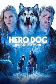 Hero Dog: The Journey Home 2021